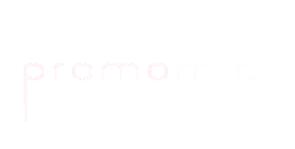 logo11_inactif