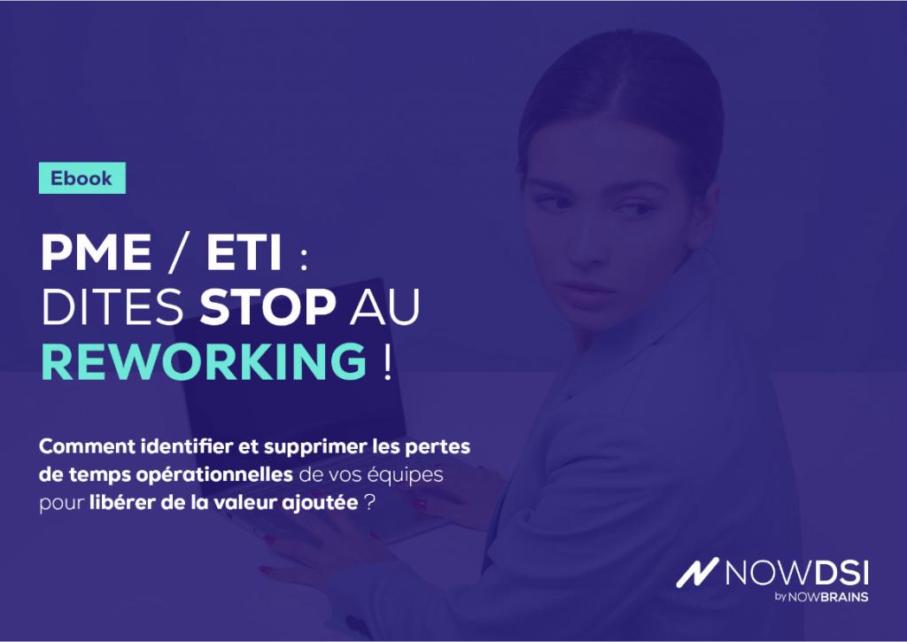 nowdsi-ebook-reworking